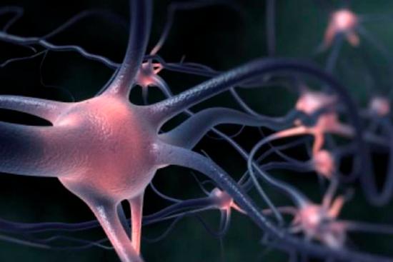 Болезнь двигательного нейрона и ее влияние на пожилых людей