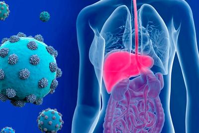 Опасность хронического гепатита