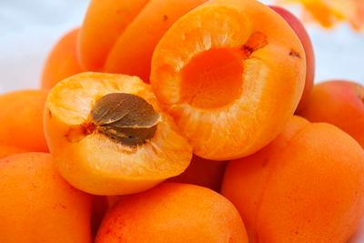 Все о пользе абрикоса обыкновенного